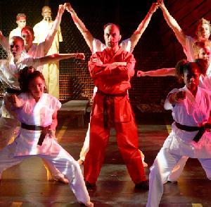 Karate Kid Cast Members